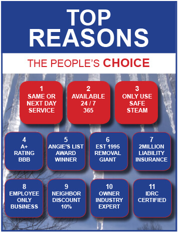 10 Reasons To Choose RTD Ice Dam Removal To Remove Snow From Your Roof